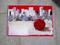 pomgranate-2011-108