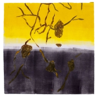 2014 monoprint, 30 x 30 cm